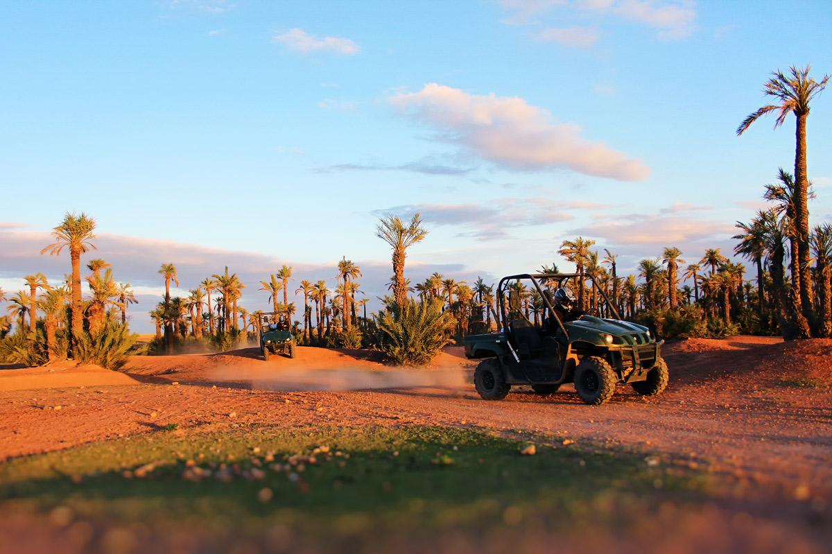 Buggy in Marrakech Desert & Palmgrove