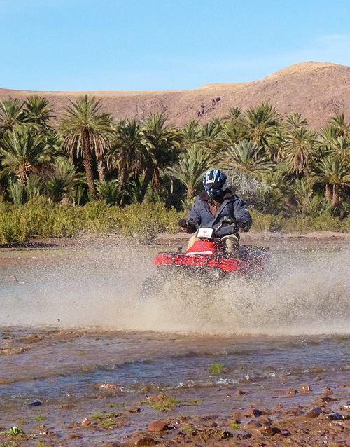 quad-maroc-palmeraie